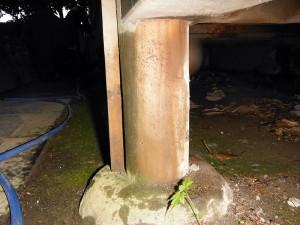 薬剤塗布後の「束柱」
