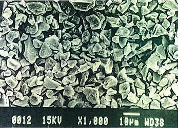 """Yoshida Shirasu"" Microscope Photograph02"